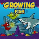 Growing Fish